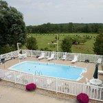 Pool Flowers Inn Link