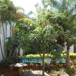 Pátio junto à piscina com mangueira carregada