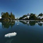 Willard Island in Blackstone Bay - Photo: Bill R.