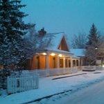Snowy Paseo