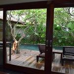 Santan Villa - View from living room
