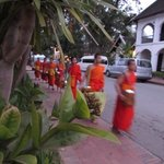 monks coming past front gate in the morning around 6:30am