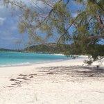 Tailwinds beach