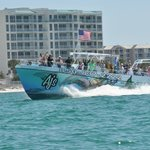 Dolphin Cruise Destin Fl