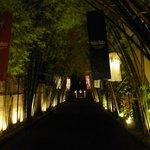 Enchanting entrance at night