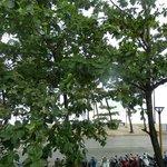 Ao Nang Beach Hotel