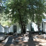 cool cabin tents