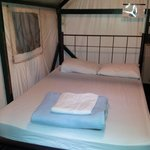 bed and beddings