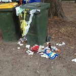 The bins!!! Disgusting, smelly & attracted unwanted wildlife!!