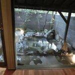 1階露天風呂付客室、露天風呂