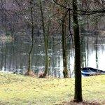 Coarse Lake