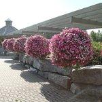 Olds College Botanic Garden