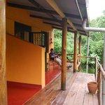 The veranda overlooking the forest