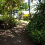 un paradis ou la végétation est reine................