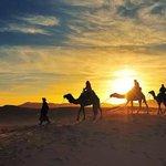Camel Trekking Merzouga Erg Chebbi