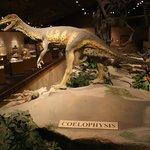 Dakota Dinosaur Museum