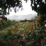 Botanical gardens January 2014