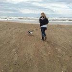 auch Hunde dürfen Mit Gassigang mit Hund am Strand :D