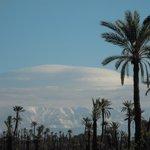 En ballade en vtt dans la palmeraie