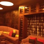 bar with leather wall tile and skunk fur wall hanging