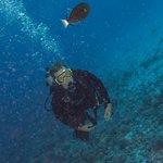 Diving at Molokini