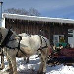 Our sleigh awaits