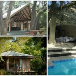 Bushwillow Collection: Lodge | Boutique | Cottage