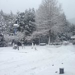 大雪のレイクプラザ前ロータリー