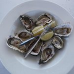 Wild & Cultivated Oysters