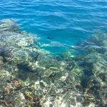 Snorkeling dal pontile
