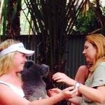 Koala kindness