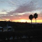 Sunset over wedding garden