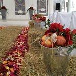 Отличные павильоны для свадебных приемов! Максимум возможностей декора и стилизации)