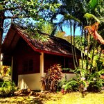 Our bungalow #8