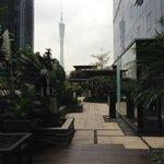 Garden on 6th Floor