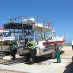 Das Boot von SharkLady