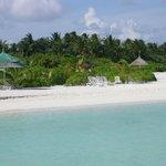 The hotel's beach