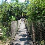 Hanging bridge near Lodge.
