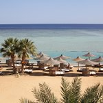 Foto di Blue Reef Red Sea Resort