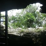 From inside the cenote
