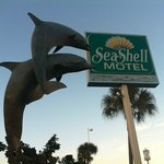 Dolphins attack the Seashell's signature sign ;)