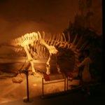 Dinosaurio  patagonico.