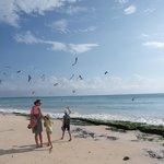 la plage a 5 minutes a pied