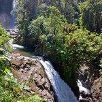 La Paz Waterfall and Wildlife Gardens