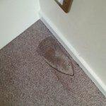 Lovely burn mark on the unclean carpet