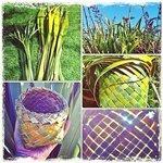 Traditional Maori flax weaving