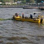 Eines der Boote welche Treibgut einsammeln