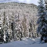 Berghotel Alpenrast Foto
