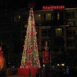 Bijao - Front Christmas Decor