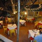 Restaurant Lucas outdoor dining area under the ficus